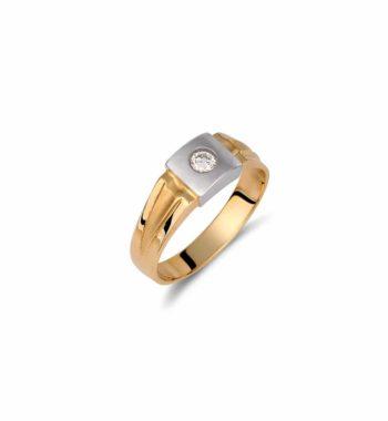 002106 Δαχτυλίδι Χρυσό & Λευκόχρυσο Με Ζιργκόν