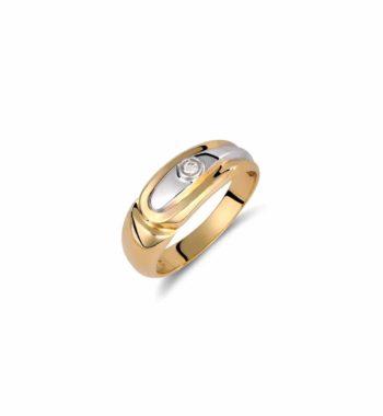 002107 Δαχτυλίδι Χρυσό & Λευκόχρυσο Με Ζιργκόν Πομπέ