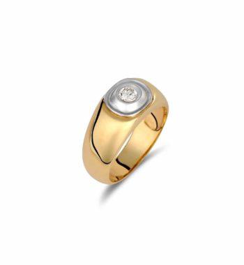 002110 Δαχτυλίδι Χρυσό & Λευκόχρυσο Με Ζιργκόν Πομπέ