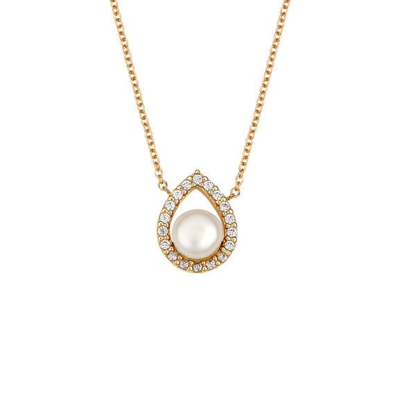 003373 Jewelor